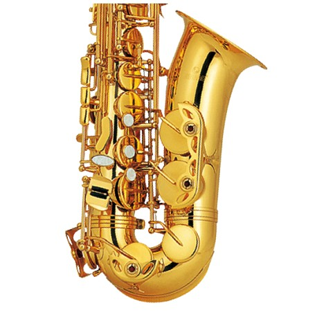 Saxofon Alto Princess AS-200GL (version especial) Bb Oro Laquelado - Envío Gratuito
